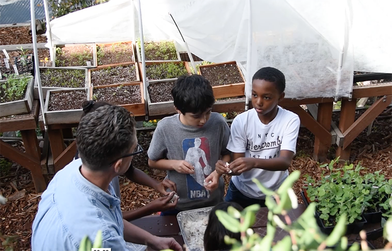 TEACHING & LEARNING: (VIDEO) Garden as a Classroom