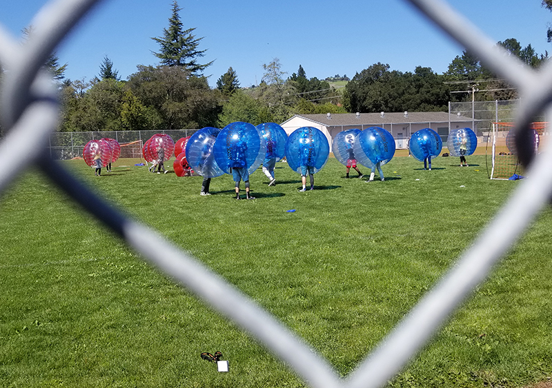 View of red and blue bubble soccer teams competing on outdoor field through fence opening